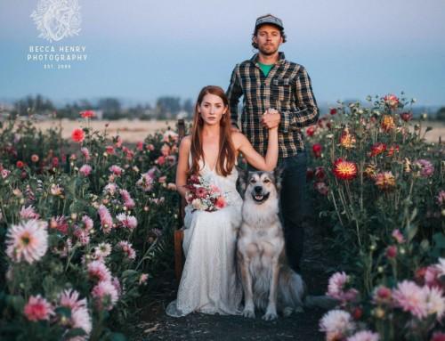 Becca Henry Wedding Photography