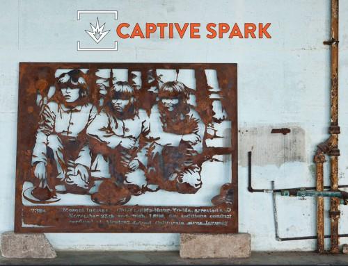 Captive Spark